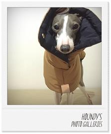イタリアングレーハウンド コート 犬服