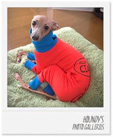 イタグレ 洋服 名入れ 犬服