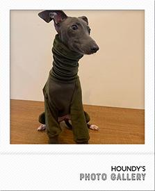 イタリアングレイハウンド つなぎ 犬服 ナナちゃん写真
