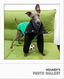 エレンちゃん ダウンコート Italian Greyhound Clothing