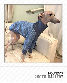 バロンくん Tシャツ Italian Greyhound