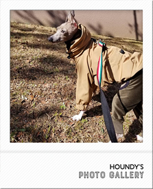 Italian Greyhound Clothing Mountain hoodie