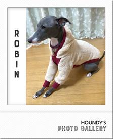 イタリアングレーハウンド服 ロビンちゃん もこもこフーディ 冬服 写真