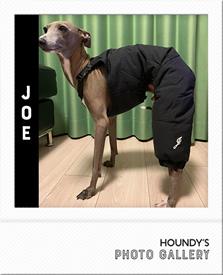 イタグレ ズボン 服 ジョー君 画像